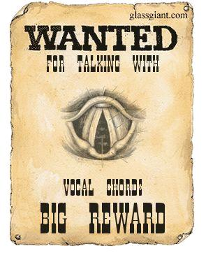 wanted-poster.JPG